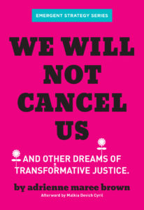 """book cover for """"We Will Not Cancel Us"""""""